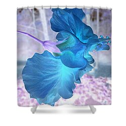 Shower Curtain featuring the photograph Blue Angel  by Cathy Dee Janes