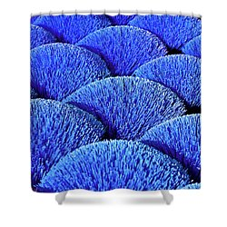 Blue Asia Sound Shower Curtain