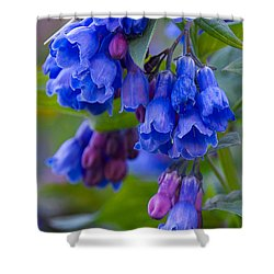 Blue Bell Vertical Shower Curtain by Aaron Spong
