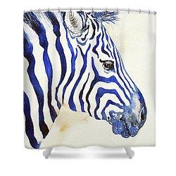 Blue Ben Zebra Shower Curtain