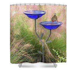 Blue Bird Bath Shower Curtain by Rosalie Scanlon