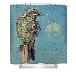 Blue Bird Moon Shower Curtain