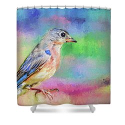 Blue Bird On Color Shower Curtain