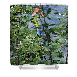 Shower Curtain featuring the photograph Blue Bird On Silk by Gary Smith