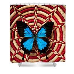 Blue Black Butterfly In Basket Shower Curtain by Garry Gay