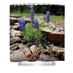 Blue Bonnets On The Rocks Shower Curtain