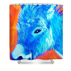 Blue Burrito Shower Curtain
