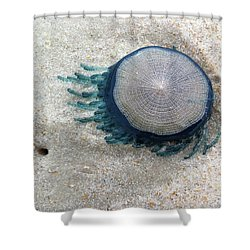 Blue Button #2 Shower Curtain