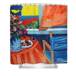 Blue Canvas Chair Shower Curtain