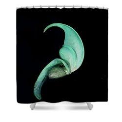 Blue Claw Shower Curtain