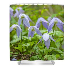 Shower Curtain featuring the photograph Blue Clematis by Fran Riley