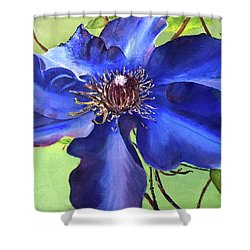 Blue Clematis Shower Curtain