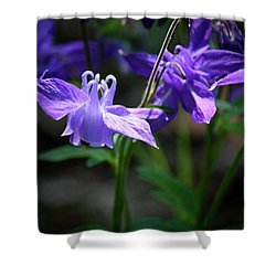 Blue Columbines Shower Curtain by Teresa Mucha