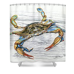 Blue Crab Shower Curtain by Jana Goode