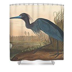 Blue Crane Or Heron Shower Curtain