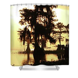 Blue Cypress Yellow Light Shower Curtain