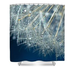 Blue Dandelion Dew By Kaye Menner Shower Curtain