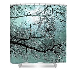Shower Curtain featuring the photograph Blue Danube by Valerie Anne Kelly