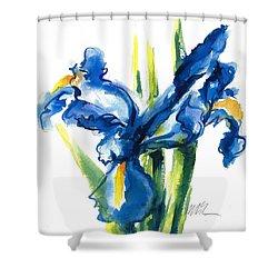 Blue Dutch Iris Flower Painting Shower Curtain