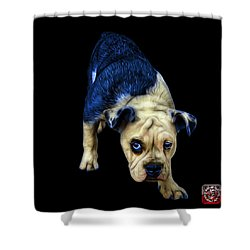 Blue English Bulldog Dog Art - 1368 - Bb Shower Curtain