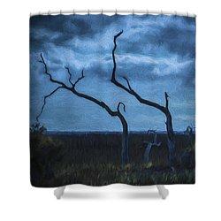 Blue Evening  Shower Curtain