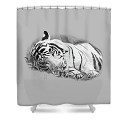 Blue Eyes - Black And White Shower Curtain by Lucie Bilodeau