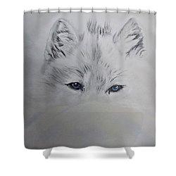 Blue Eyes Shower Curtain by Maris Sherwood