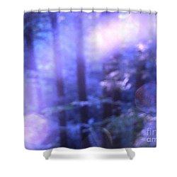 Blue Fairies Shower Curtain