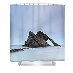 Blue Fiddle Shower Curtain