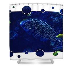 Blue Fish Shower Curtain by Carol Groenen