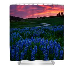Shower Curtain featuring the photograph Blue Flame by Dustin  LeFevre