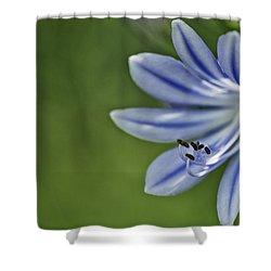 Blue Flower Shower Curtain