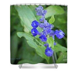 Blue Flowers B7 Shower Curtain