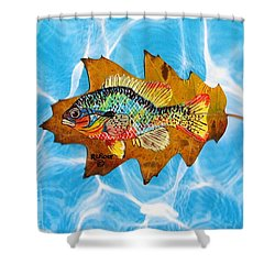 Blue Gill Shower Curtain