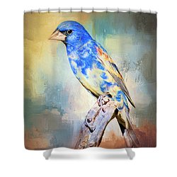 Blue Grosbeak Shower Curtain