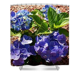 Shower Curtain featuring the digital art Blue Heaven by Barbara S Nickerson