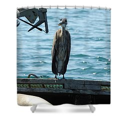 Blue Heron #2 Shower Curtain