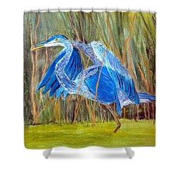 Blue Heron In Viera  Florida Shower Curtain