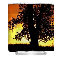 Blue Heron At Sunrise Shower Curtain