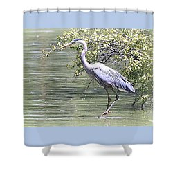 Blue Heron Shower Curtain by Clarice  Lakota