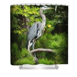 Blue Heron Shower Curtain by Lydia Holly