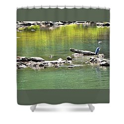 Blue Heron On The Chattahoochie Shower Curtain