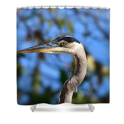 Blue Heron Profile Shower Curtain