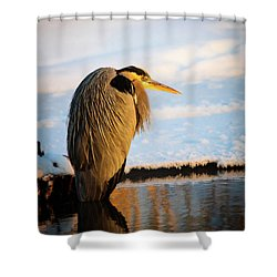 Shower Curtain featuring the photograph Blue Heron Resting by Bryan Carter