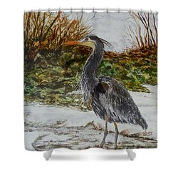 Shower Curtain featuring the painting Blue Heron by Sher Nasser