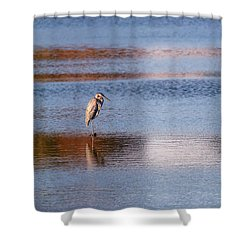 Blue Heron Standing In A Pond At Sunset Shower Curtain