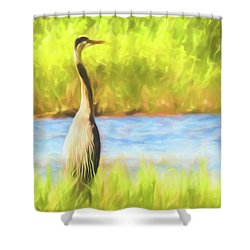 Blue Heron Standing Tall And Alert Shower Curtain