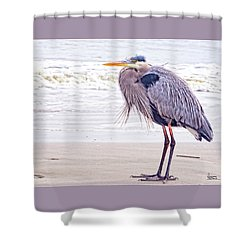 Blue Heron Watching Shower Curtain