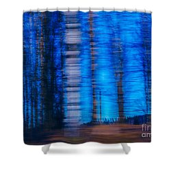 Blue Hour In Birch Forest Shower Curtain