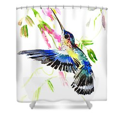 Blue Hummingbird Shower Curtain